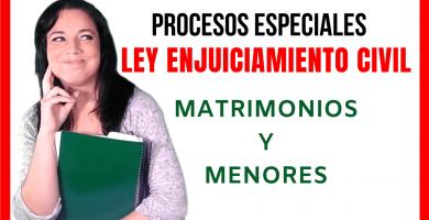 procesos matrimoniales y de menores