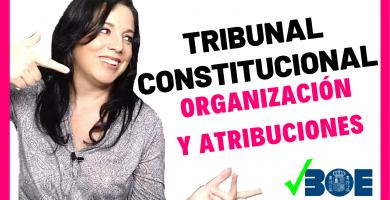 tribunal constitucional oposiciones